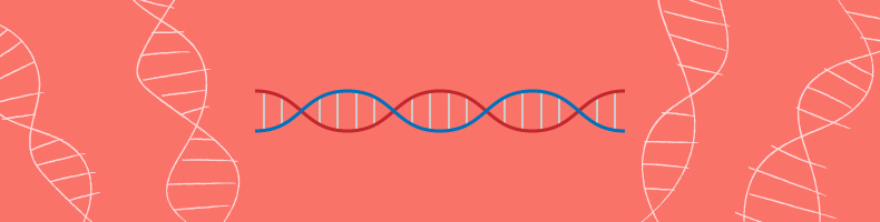 Scaling_sub_dna